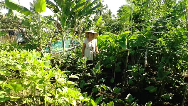 For farmers in impoverished communities, growing an abundant crop can feel like an uphill battle. Elsa was able to use the agricultural training she received through Samaritan's Purse to make her under-utilized land into a fruitful garden.